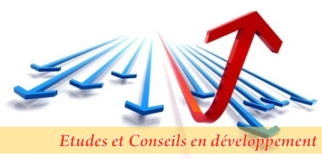 Etudes & Conseils en développement